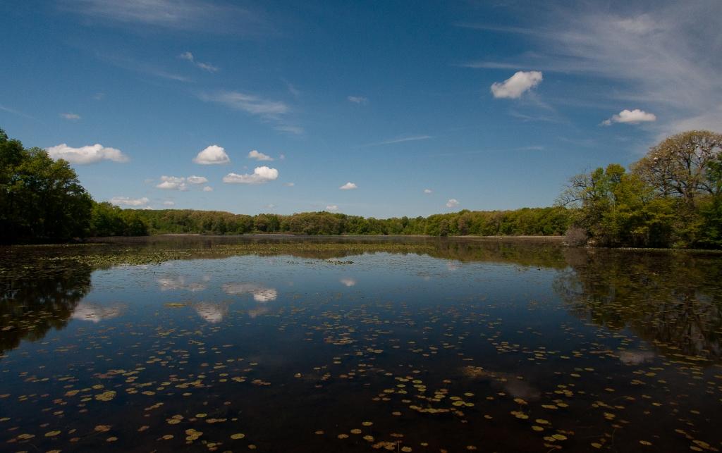 Wildwing Lake