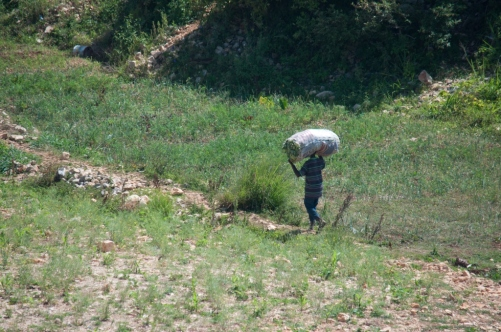2014 Haiti - The neighborhood-0398