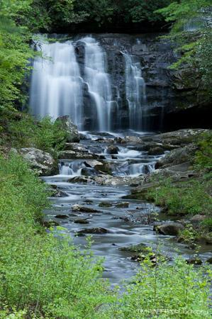 Meigs Falls through the trees