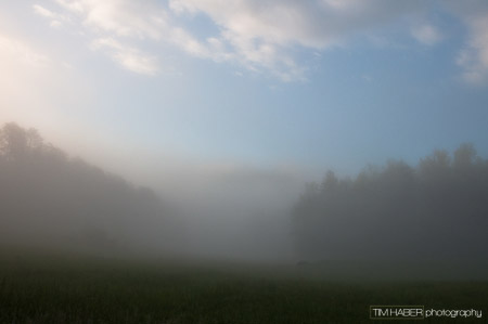 As the fog thins (1)