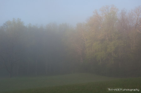As the fog thins (2)